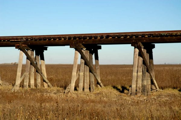 Trestling the Bridge